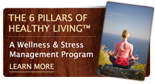 The 6 Pillars of Healthy Living – A Wellness and Stress Management Program at Post Ranch – learn more here.