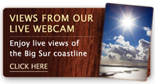 Views From Our Live Webcam: Enjoy live views of the Big Sur coastline – click here.