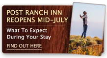 Post Ranch Inn reopens in Mid-July: What to expect during your Stay – find out here.