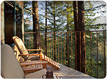 Tree house deck at Post Ranch