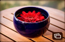 flower in bowl